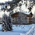 Vila Borievka zima